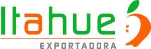 Logotipo ITAHUE ok